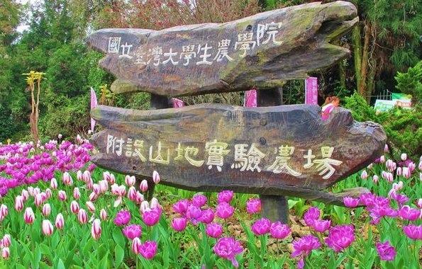 梅峰農場.jpg