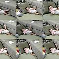 2010.08.13 看我邊喝水邊拉筋劈腿04.jpg