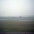 2009.11.15 西濱風景