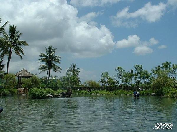 立川的池塘