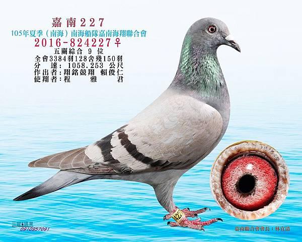 2016夏綜合九