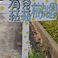 C360_2013-11-17-14-50-02-724.jpg
