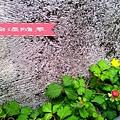 UPHOTO_20140322_023354.jpg