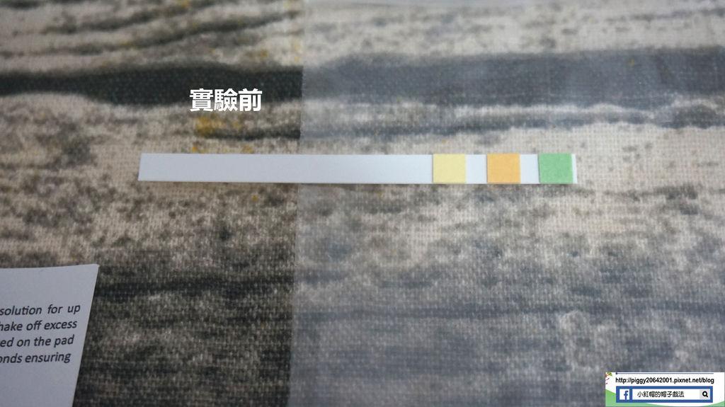 DSC08739_副本.jpg