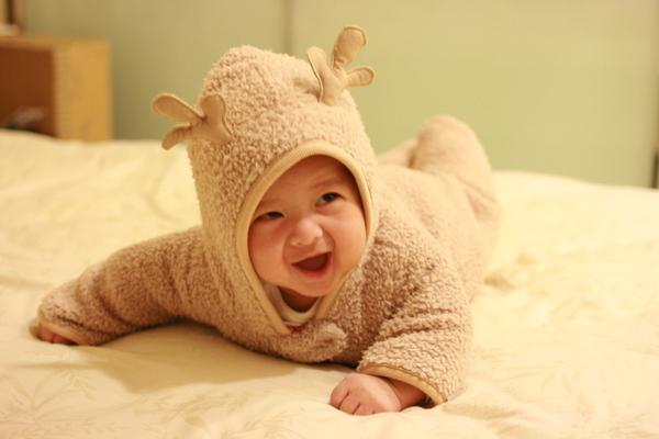 開心的小麋鹿