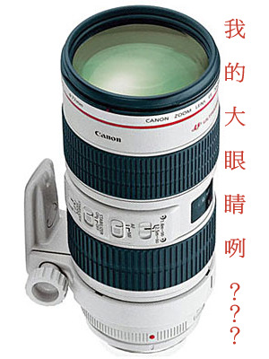 canon 70-200mm f2.8 L IS USM.jpg