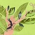 小螞蟻豆豆-2.jpg