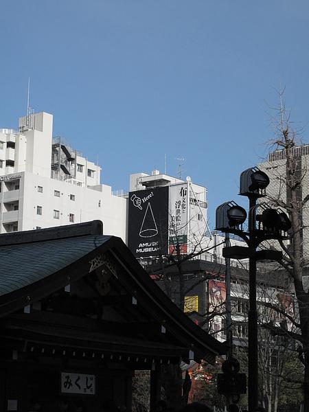IMG_7205.jpg
