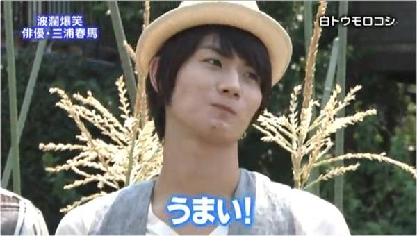 haruma_white corn_c.jpg