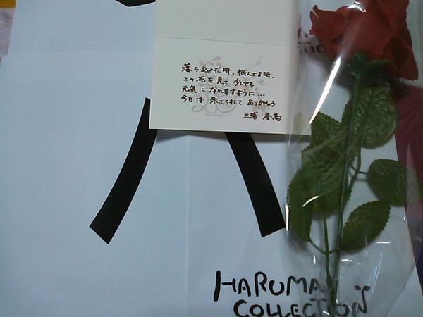 Haruma collection - Rose.jpg