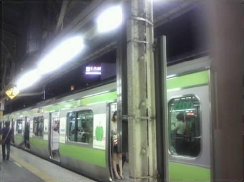 Aomori train3.jpg