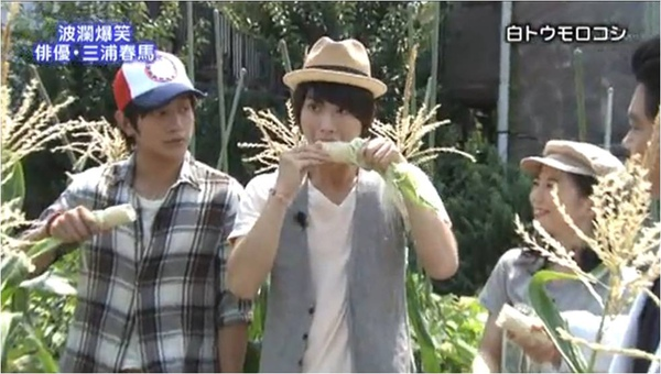haruma_white corn_b.jpg