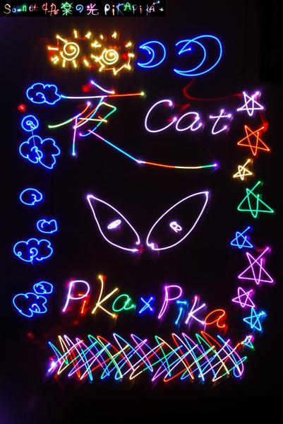 Pika夜貓.JPG