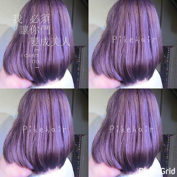 紫灰色系列