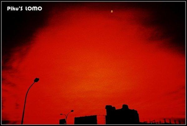 Tiger City 夜景