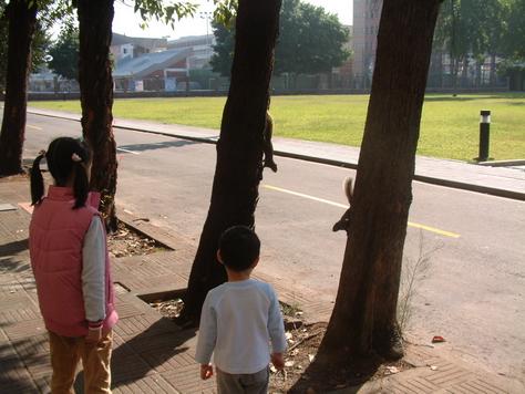 逢甲--兩個孩子與兩隻松鼠
