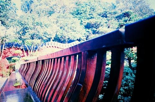 淡江大學--忘了是哪裡