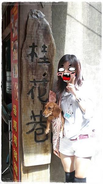 南庄桂花巷.07