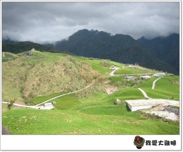 DAY4花東縱谷.09