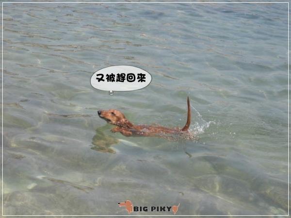悠游DAY貳.13