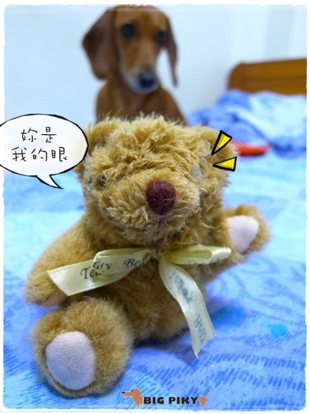 小熊日記.10