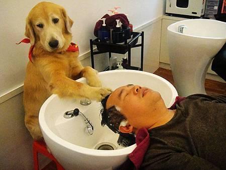 阿爸...你幫我洗了快七年,我也該回饋你囉.jpg
