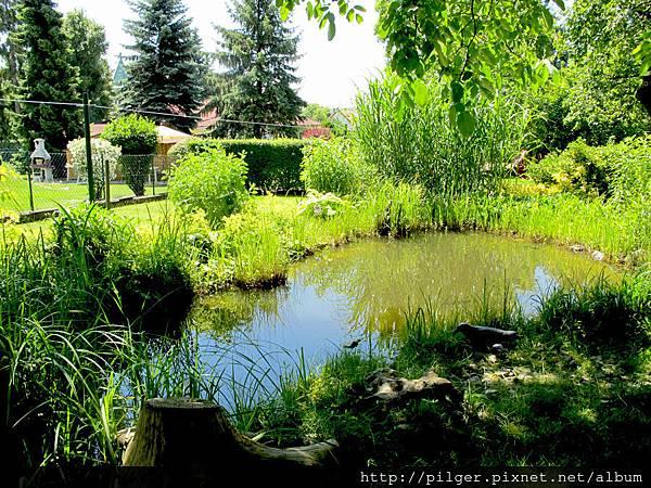 公婆家的庭院