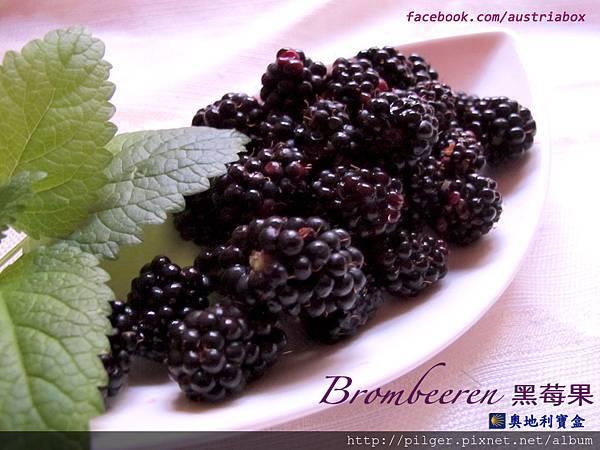IMG_6513黑莓果.jpg