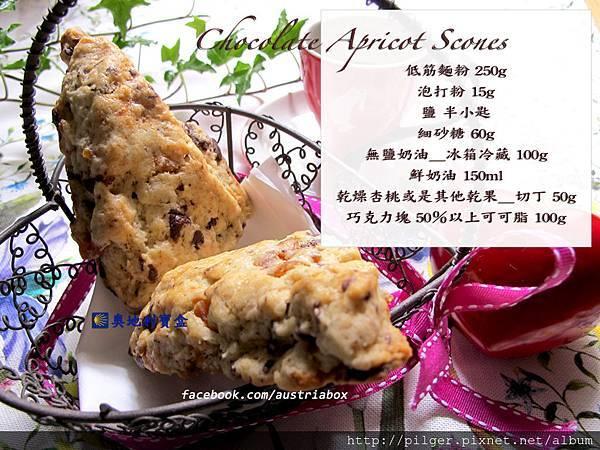 IMG_9724巧克力杏桃司康 手札.jpg