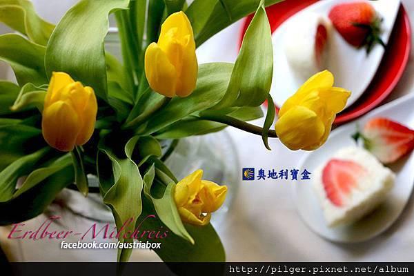 IMG_1048s Kopie.jpg