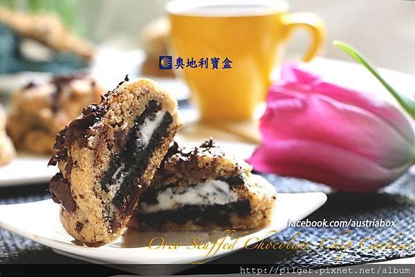IMG_1511巨無霸巧克力餅乾Cover.jpg
