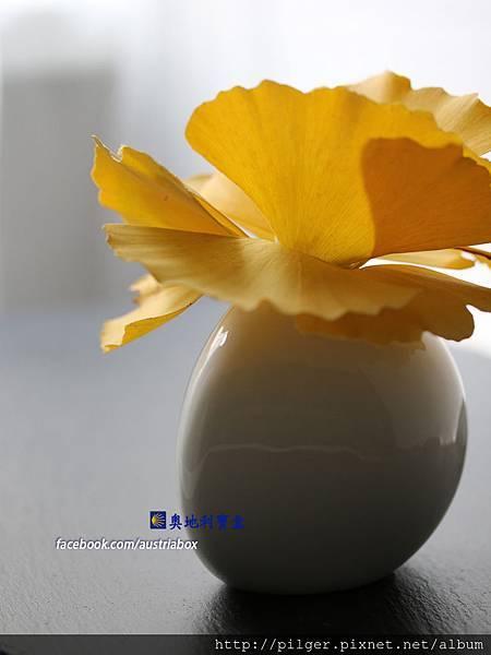 IMG_3210 Kopie.jpg