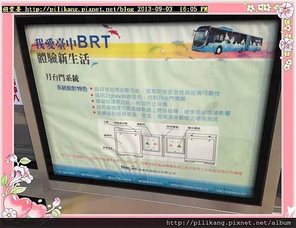 BRT (8).jpg