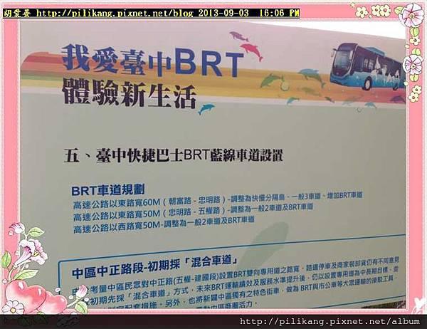 BRT (15).jpg