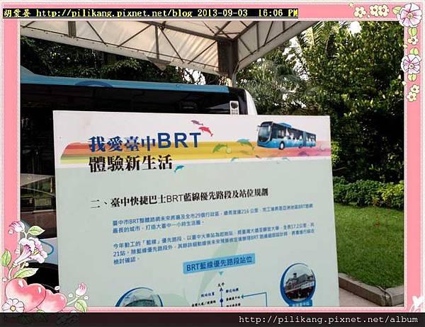 BRT (20).jpg