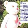 泰迪1 (台熊協會).JPG