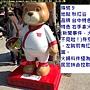 泰迪9 (火鍋熊).JPG