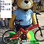 泰迪17 (自行車熊).JPG