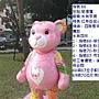 泰迪68(水舞紅熊).JPG
