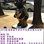 泰迪80(潮港黑熊).JPG