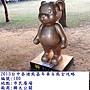 泰迪100 (全金熊).JPG