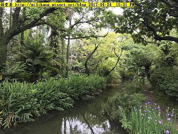 台北植物園 (2)