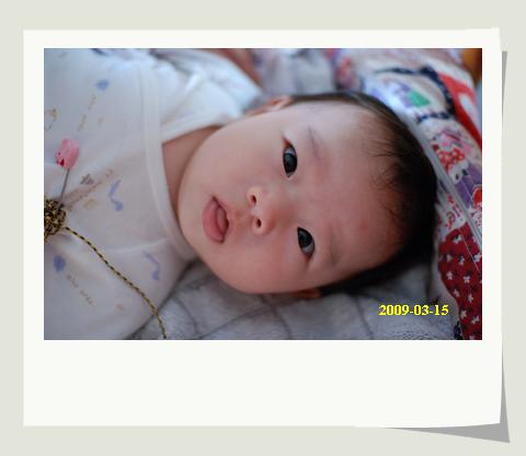 20090315_001.JPG