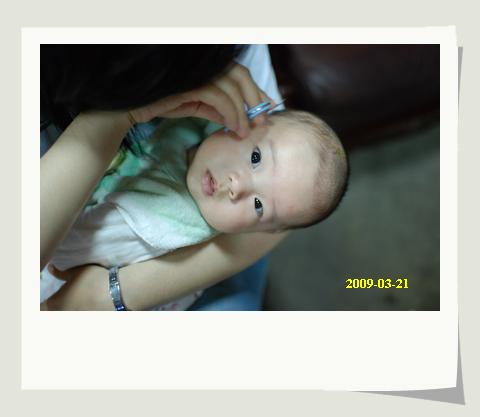 20090321_003.JPG