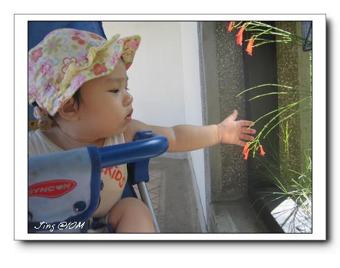 jin2009-1003-141204.jpg