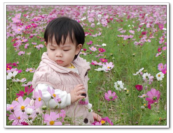 jin2010-0130-101304.jpg