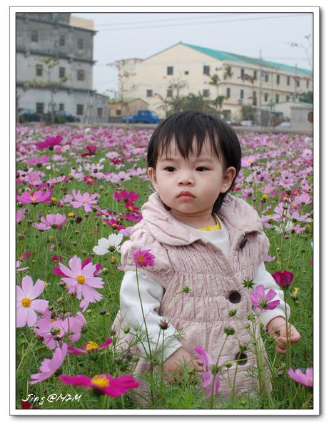 jin2010-0130-101335.jpg