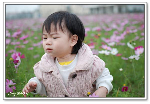 jin2010-0130-101738.jpg