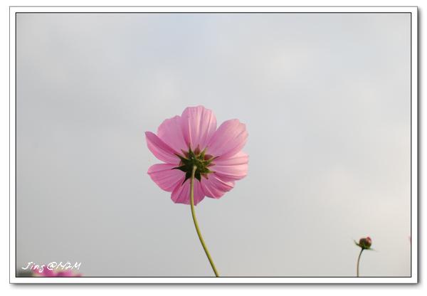 jin2010-0131-165658.jpg