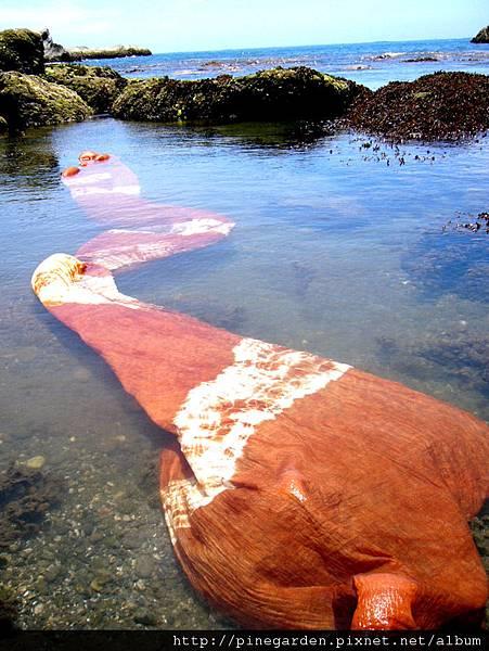 06-1橘色海洋02-海邊漂洗